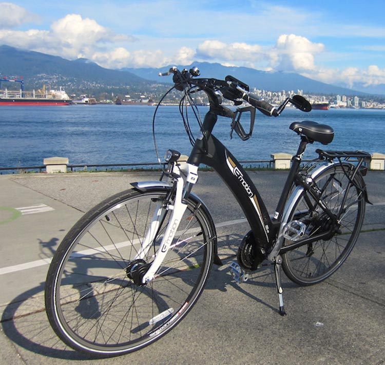 The Emotion Neo Street is an ebike with a hub drive motor