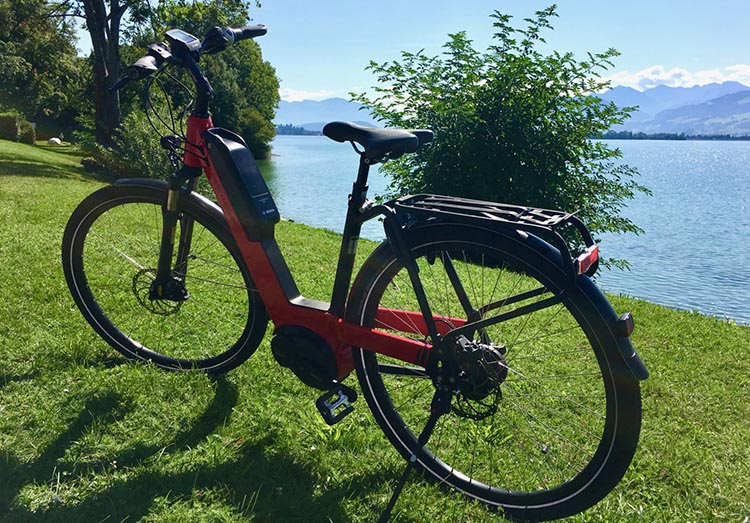 This left me this cute Nevo Model e-bike from Riese & Müller