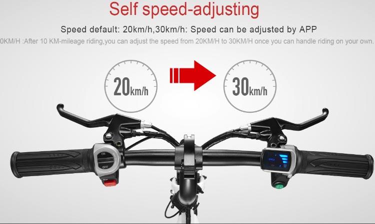 DYU Smart Bike D1 07