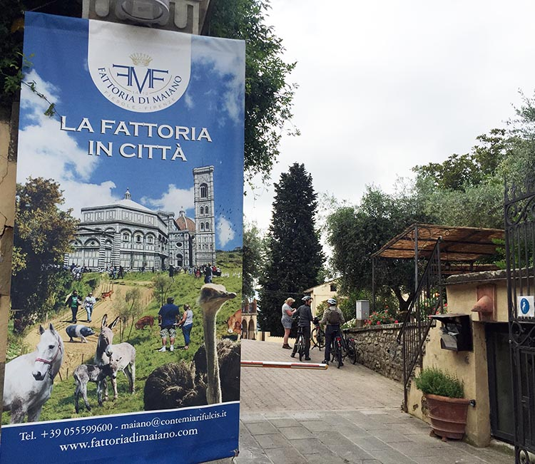 Our Electric Bike tour of Florence: La Fattoria in Citta (the factory in the city)